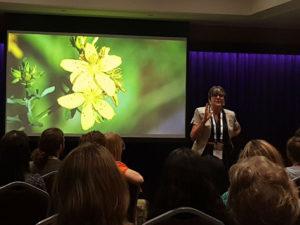 Sue presenting storytelling workshop